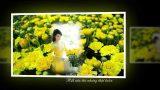 Áo Em Thu Vàng–nhạc ngoại quốc–Ngọc Lan